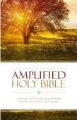 Amplified Thinline Holy Bible Version 2015