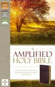 Amplified Holy Bible Version 2015