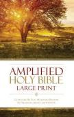 Amplified bible large print