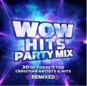 CD Wow hits Party Mix 2 CD