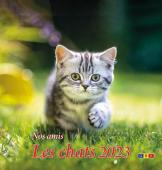 Chats grand format 2021